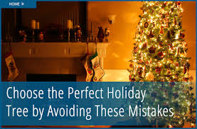 what artificial christmas tree was black friday deal at home depot don u0027t make these 8 errors when buying a christmas tree the