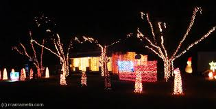 best lights in fernandina st marys and
