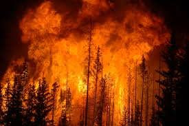 Fire Evacuations Nz by There U0027s Not Enough Money To Save The West From An Increase In