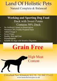 healthy colors land of holistic pets healthy holistic dog food and herbs