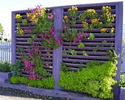 garden diy outdoor
