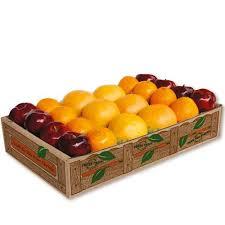 fruit gift box florida fruit gift box oranges grapefruit apples hyatt fruit