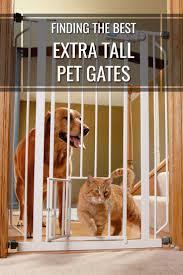 Overstock Com Pets Best 25 Tall Pet Gate Ideas On Pinterest Tall Dog Gates Diy