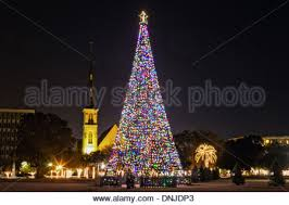 palm tree with christmas lights and citadel square baptist church