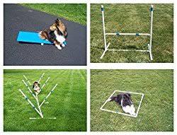 Backyard Agility Course Dog Agility Equipment Essential For Training Or For Fun American