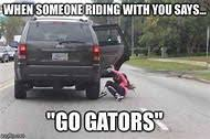 Florida Gator Memes - best 25 ideas about florida meme find what you ll love