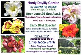 daylilies for sale hardy daylily garden connecticut ct daylilies hosta for sale