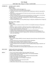layout artist job specification layout artist resume sles velvet jobs