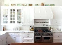 Kitchen Door Designs Kitchen Cabinet Door Designs Tags Extraordinary Country Style