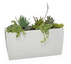 Large White Planter by Outdoor White Rectangular Planter Box For Modern Patio Decor