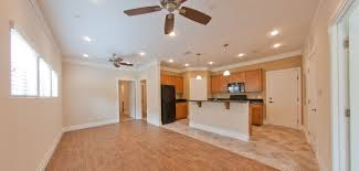 Ashton South End Luxury Apartment Homes by Apartments Near Uf Gainesville Fl