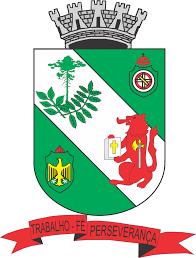 Famosos Brasão e bandeira da cidade de Rio Negro « Guia Riomafra &VK23