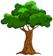 tree png clip best web clipart