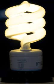 living on earth broken bulb dreams