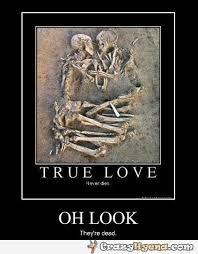 Skeleton Meme - skeletons hugging each other true love never dies