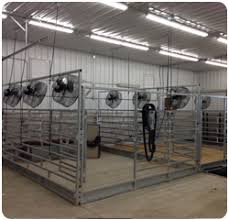 schaefer fans for sale calf climate cattle coolers and livestock coolers