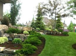 evergreen garden plans full image for garden colourful conifer