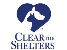 cleartheshelters bring home your new best friend wcsh6 com