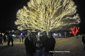 tree of life tree of life utah u0027s adventure family