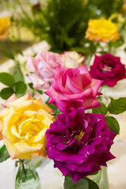 Asheville Nc Botanical Garden by 293 Best Botanical Gardens Images On Pinterest Botanical Gardens