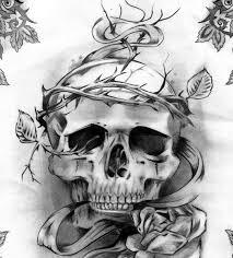 14 best skull drawings images on skulls designs