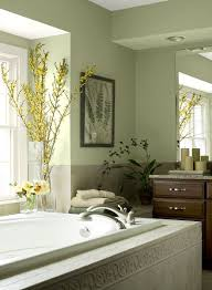 Bathroom Paints Ideas Lovely Green Bathroom Color Ideas Dce1de1caa2e125564eb2bcc5b85398f