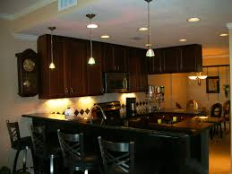 Chinese Kitchen Cabinet by 52 Dark Kitchens With Wood And Black Kitchen Cabinets Cabinetry