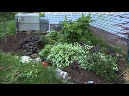 Shady Backyard Ideas Plants For A Shaded Garden At Home With P Allen Smith Shady