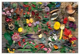 garden montage jigsaw puzzle for all who our green and