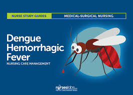 dengue hemorrhagic fever nursing care management and study guide