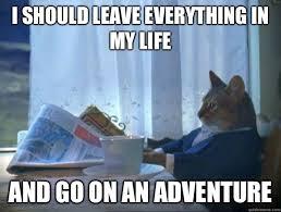 Adventure Meme - i should leave everything cat meme cat planet cat planet