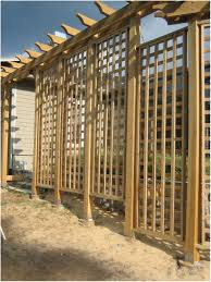 backyards superb backyard trellis backyard trellis for privacy