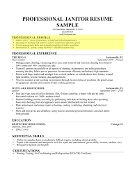 hotel resume samples how to write a professional profile resume genius janitor professional profile