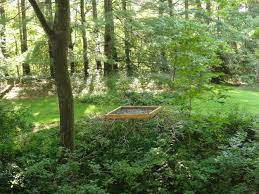 Asheville Nc Botanical Garden asheville nc welcome to our site