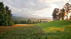 brown golf management bluffton sc