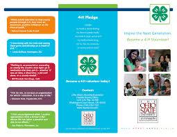 volunteer brochure template brochure recruiting brochure template