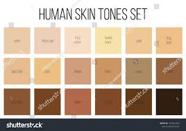 vector skin tone tutorial creative vector illustration human skin tone stock vector hd