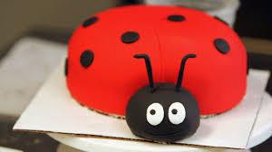ladybug birthday cake how to add to a ladybug cake for a kids party howcast