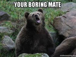 Boring Meme - your boring mate sarcastic bear make a meme