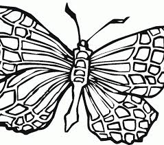 butterflies coloring pages coloring pages adresebitkisel