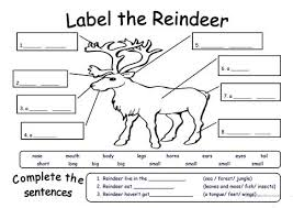 free printable reindeer activities label the reindeer worksheet free esl printable worksheets made by