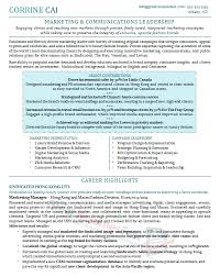 Professional Highlights Resume Examples by Stunning Idea Executive Resume Examples 7 Executive Cv Template