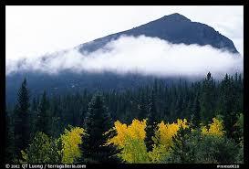 picture photo fog trees and peak glacier basin rocky mountain