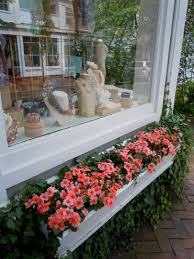 Beautiful Window Boxes Whimsy And Window Boxes On Nantucket Jayne In Georgia