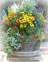 best 25 whiskey barrel planter ideas on pinterest barrel garden