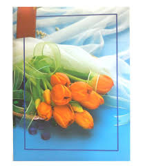 Best Photo Albums Online Natraj Multicolor Photo Album 300 Pocket 4 X 6 Inch Buy