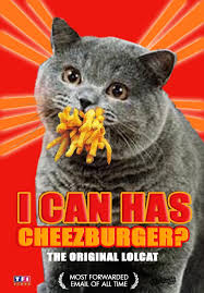 I Can Has Cheezburger Meme - index of media 2013 may meme