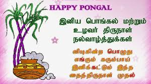 lovable images 2017 tamil pongal greetings wallpapers free