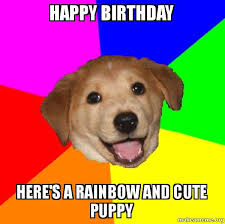 Cute Birthday Meme - happy birthday here s a rainbow and cute puppy rainbow puppy