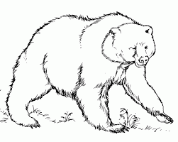 eric carle coloring pages black bear coloring pages coloring home